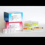 CMV HHV6,7,8 R-GENE<sup>®</sup>